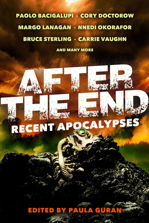 After the End: Recent Apocalypses edited by Paula Guran (Ebook)